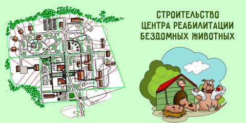 Карантин для нашего Центра#Лапы_в_тепле